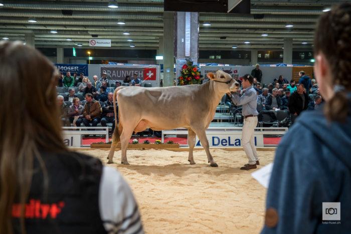 00013 TierTechnik 2020 Impressionen von der Messe © foto huwi